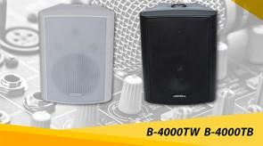 B_4000TW_B_4000TB.jpg