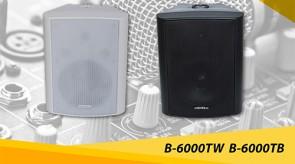 B_6000TW_B_6000TB.jpg