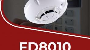 FD8010.jpg